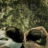 Two young girls with dark hair sitting back to back under a tree in the summer with dappled sunlight