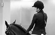 ANNE SOPHIE MILETTE prepares to compete horse Braque de Villa D'Arto in the Greenhawk Canadian Championship at The Royal Horse Show in Toronto, Ontario.