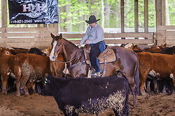 May 20, 2017 - Minshall Farm Cutting 3, held at Minshall Farms, Hillsburgh Ontario. The event was put on by the Ontario Cutting Horse Association. Riding in the Ranch Class is Nancy Poole on MS Smart Freckles owned by Troy Donaldson.