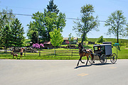 Peach Bottom, Pennsylvania - May 17, 2017: Chris McDougall and his rescue donkey Sherman wave to one of their Amish neighbors after finishing a group donkey run in rural Pennsylvania Wednesday May 17, 2017.<br /> <br /> CREDIT: Matt Roth for The New York Times<br /> Assignment ID: 30206505A