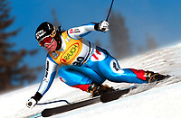 Alpint. Verdenscup. FIS World Cup. 06.12.2002.<br /> Lake Louise, Canada.<br /> Carole Montillet, Frankrike.<br /> Foto: Digitalsport