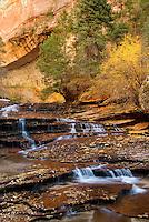 Left Fork of North Creek flowing over red sandstone, Zion National Park Utah USA