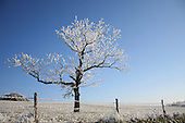 Landscapes - Winter