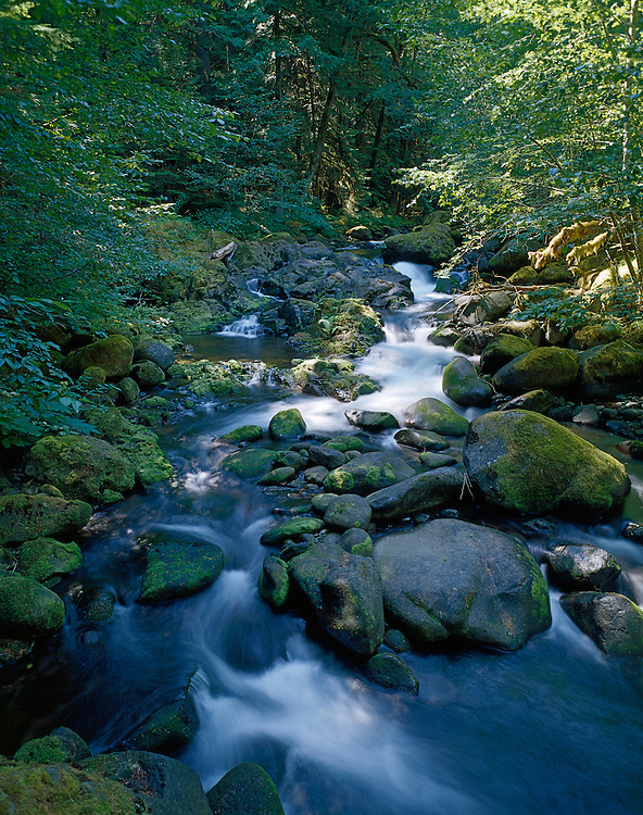 French Pete Creek, Three Sisters Wilderness, Willamette National Forest, Cascade Mountains, Oregon.