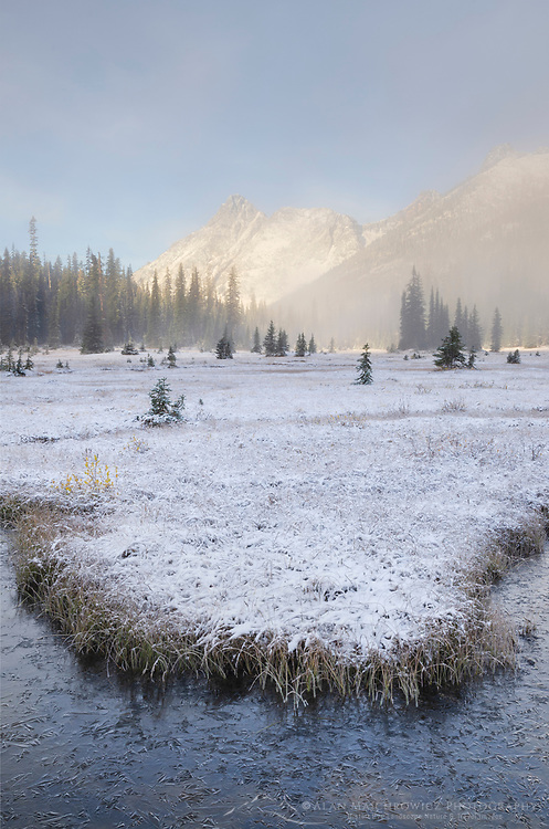Autumn snow and fogg at Washington Pass meadows, North Cascades