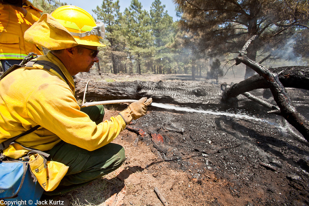 22 JUNE 2010 - FLAGSTAFF, AZ: Jeff Shaw (CQ) from Christopher Kohl's FD (CQ) puts water on a hot spot on the line at the Schultz Fire burning north of Flagstaff, AZ. The fire has consumed more than 12,000 acres of forest land and burned within a few feet of homes in some neighborhoods in Flagstaff.   PHOTO BY JACK KURTZ
