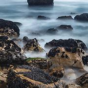 Mussels And Rocky Shoreline - North Wilder Ranch Cove - Santa Cruz, CA