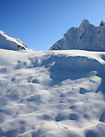 Cariboos, Petter, Canada, CMH, Canadian Mountain Holidays, Heliskiiing