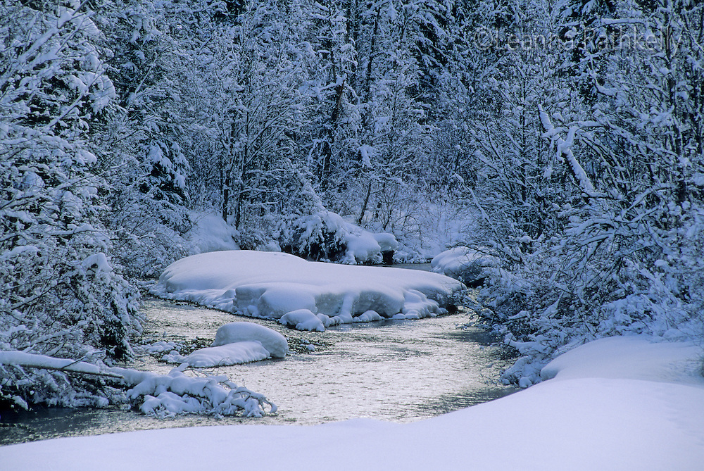 Fitzsimmons Creek in winter, Whistler, BC