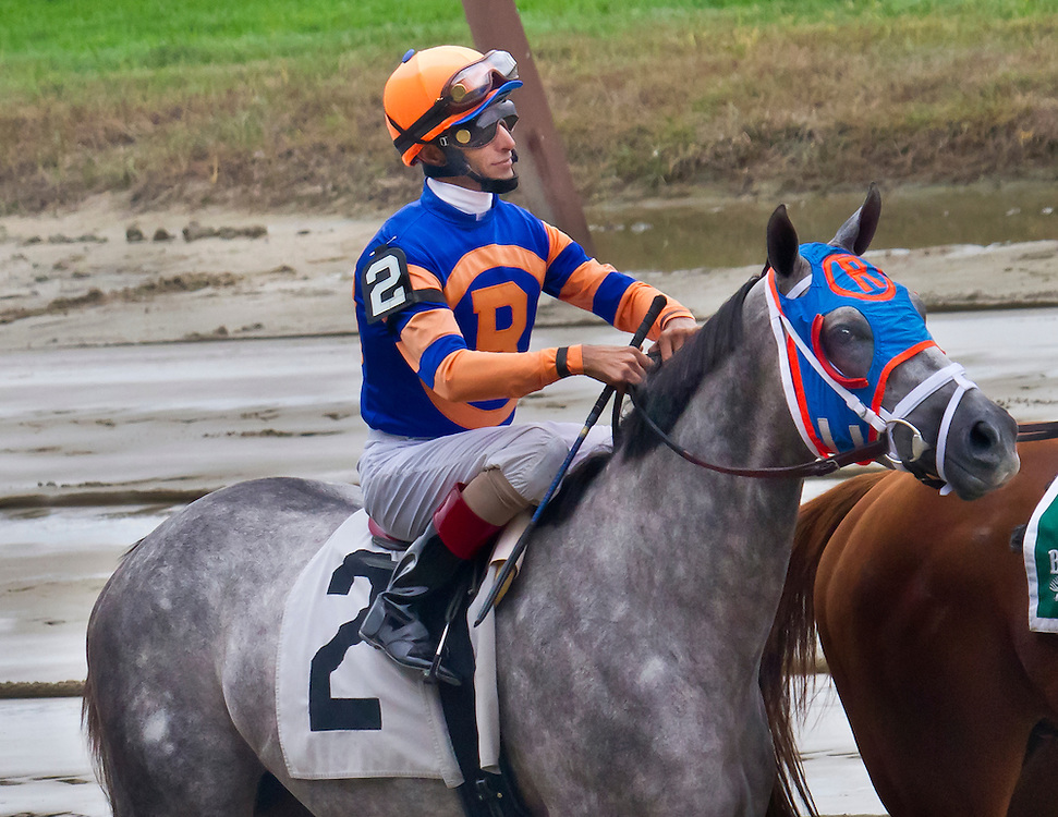 """""""How Do I Win"""" was still trying to win after this race. He finished 6th, with jockey Jon Velasquez aboard. He was then owned by Mike Repoli."""