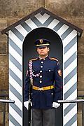 Guard, Prague Castle, Pra?ský hrad. Different views from Prague (Praha), the capital of the Czech Republic.  o (Photo: Alan Aubry)