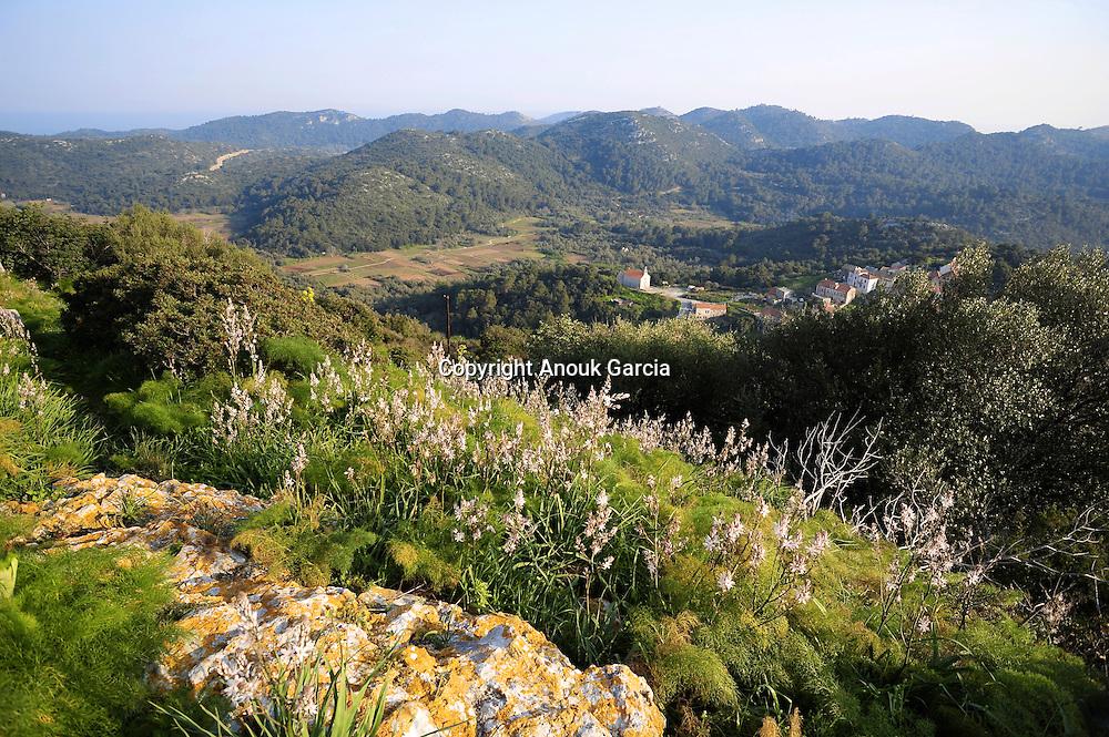 L'archipel de Lastovo est l'un des plus vert et luxuriant de l'Adriatique.