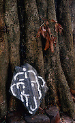 Ganesh. painted on granite, base of a tree.