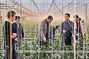 Nederland, Huissen, 10-12-2011Een Chinese handelsdelegatie uit Wuhan bezoekt de hightech kassen in Begerden. De Grondmij adviseert de lokale autoriteiten daar bij het ontwikkelen van een nieuw te ontwikkelen woon en werk gebied.Foto: Flip Franssen/Hollandse Hoogte