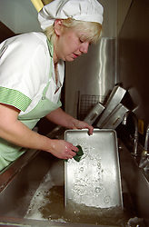 Female refectory assistant washing food trays in school kitchen sink,