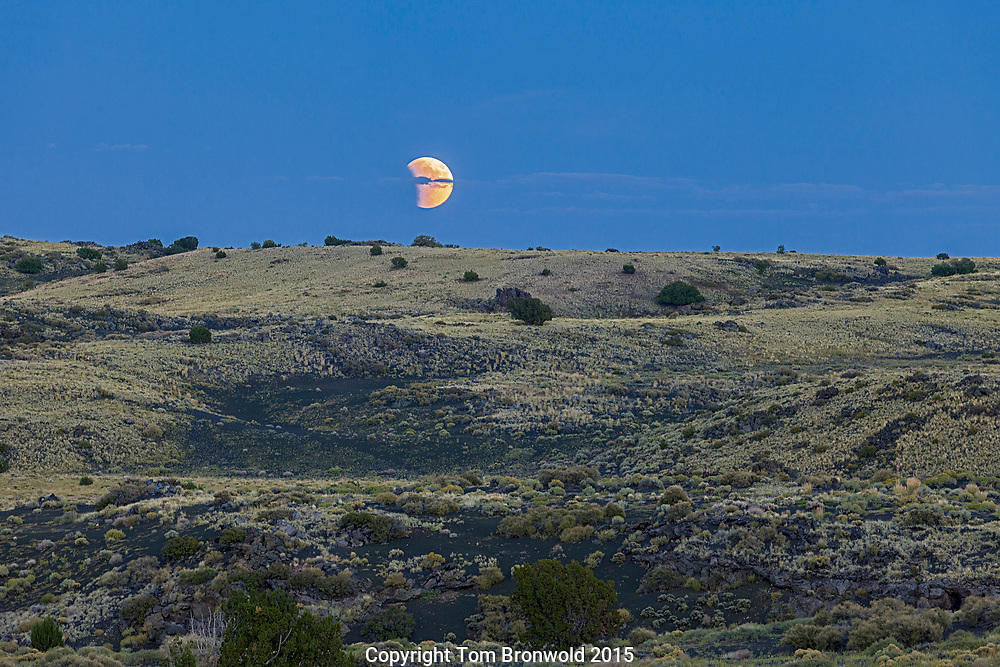 Great Basin woodland and a lunar eclipse, Wupatki,AZ