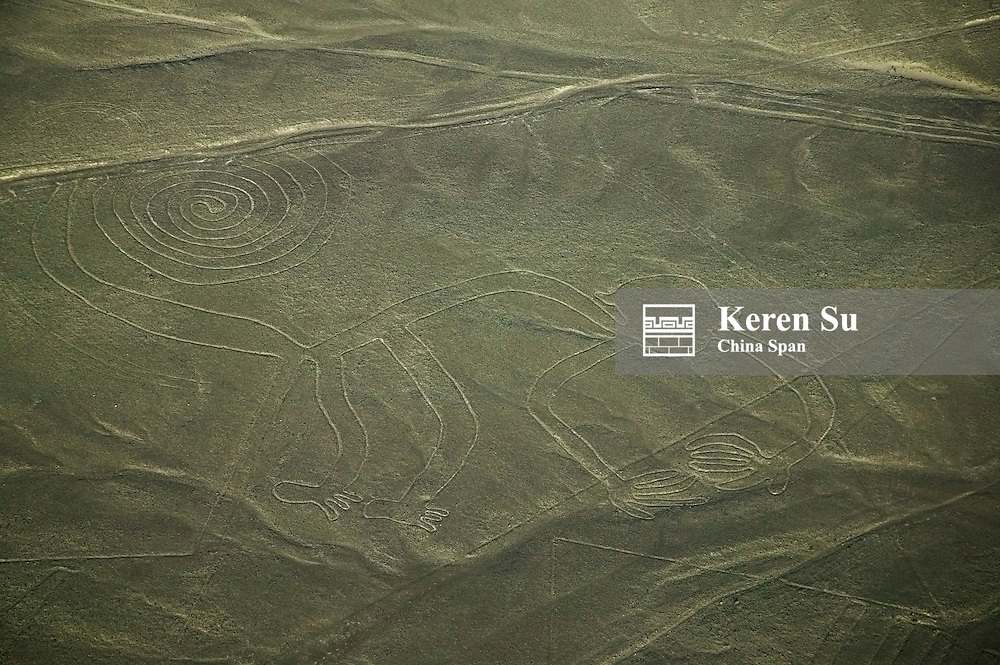Aerial view of howler monkey drawing, Nazca Lines, Peru