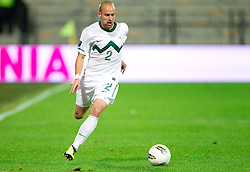 Miso Brecko of Slovenia during football match between National Teams of Slovenia and Serbia of UEFA Euro 2012 Qualifying Round in Group C on October 11, 2011, in Stadium Ljudski vrt, Maribor, Slovenia.  Slovenia defeated Serbia 1-0. (Photo by Vid Ponikvar / Sportida)