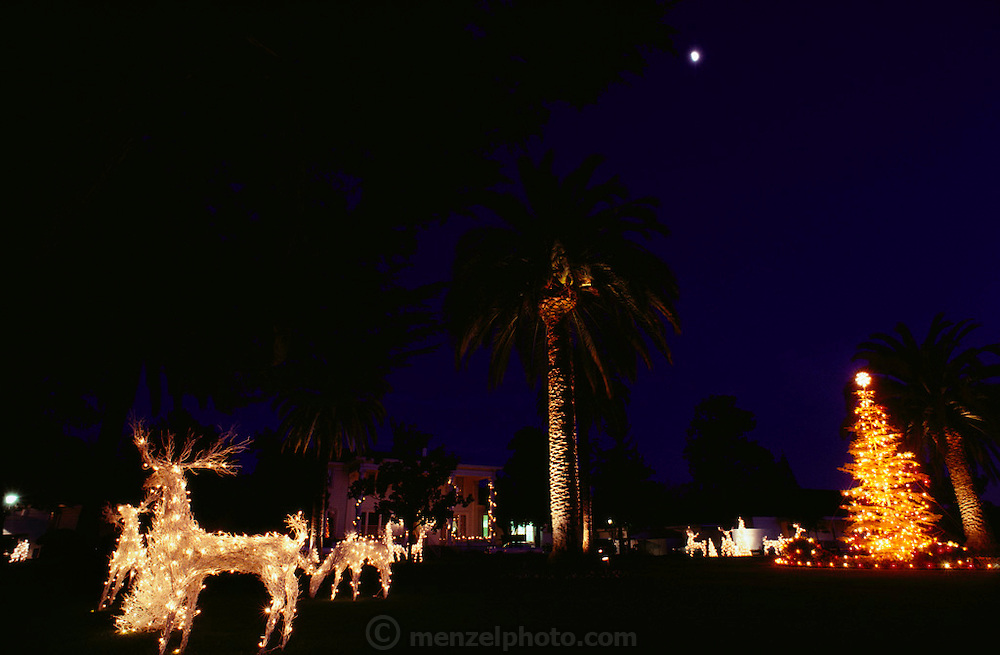Christmas lights and decorations at Silverado Country Club, Napa Valley, Napa, California. USA.