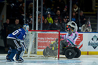 KELOWNA, CANADA - FEBRUARY 12: Rocky Raccoon, the mascot of the Kelowna Rockets taunts Griffen Outhouse #30 of the Victoria Royals with a squirt gun after being sprayed with water by the goalie at the previous game on February 12, 2018 at Prospera Place in Kelowna, British Columbia, Canada.  (Photo by Marissa Baecker/Shoot the Breeze)  *** Local Caption ***