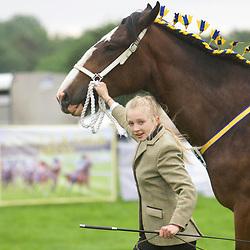 Warrington Horse Show 2017