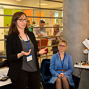 04.04.2017         <br /> Digitisation and Archives professionals from the Gluksman Library University of Limerick presented a talk on Attics to Archives at the Bank of Ireland Workbench for the Limerick Lifelong Learning Festival.<br /> Pictured at the event was Sinead Keogh, Glucksman Library, UL. Picture: Alan Place