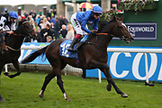 DUBAI ICON (12) ridden by Josephine Gordon and trained by Saeed bin Suroor winning The Coldstream Guards Association Cup over 1m 2f (£15,600) for Godolphin during the York Coral Sprint Trophy meeting at York Racecourse, York, United Kingdom on 12 October 2019.