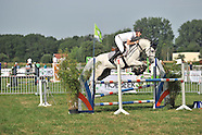 2015-06-nat-jonge-paarden-meise