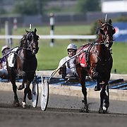Driver Brian Sears and Royalty For Life (right) winning the $1.2 million Hambletonian final for 3-year-old trotters on at The Meadowlands Harness Racetrack, East Rutherford, New Jersey, USA.  3rd August 2013. Photo Tim Clayton