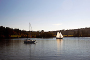 Sailboat, Blind Bay, Shaw Island, San Juan Islands, Puget Sound, Washington State