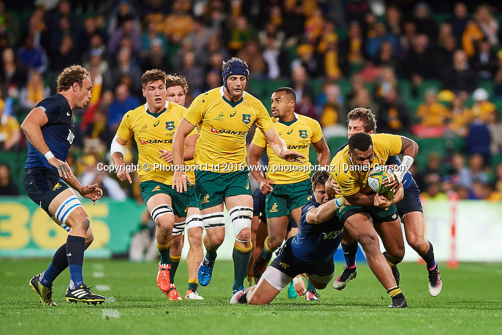 Samu Kerevi of the Qantas Wallabies pushes through a tackle during the Rugby Championship test match between the Australian Qantas Wallabies and Argentina's Los Pumas from NIB Stadium - Saturday 17th September 2016 in Perth, Australia. © Copyright Photo by Daniel Carson / www.photosport.nz)