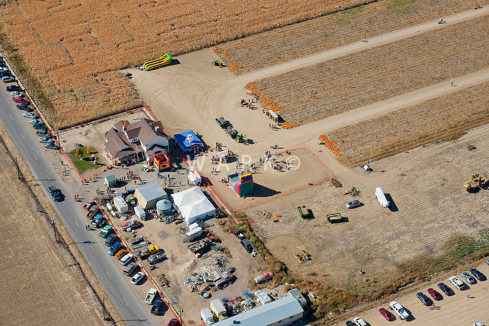 Pueblo County Pumpkin Patch.  Oct 2012 JC82082