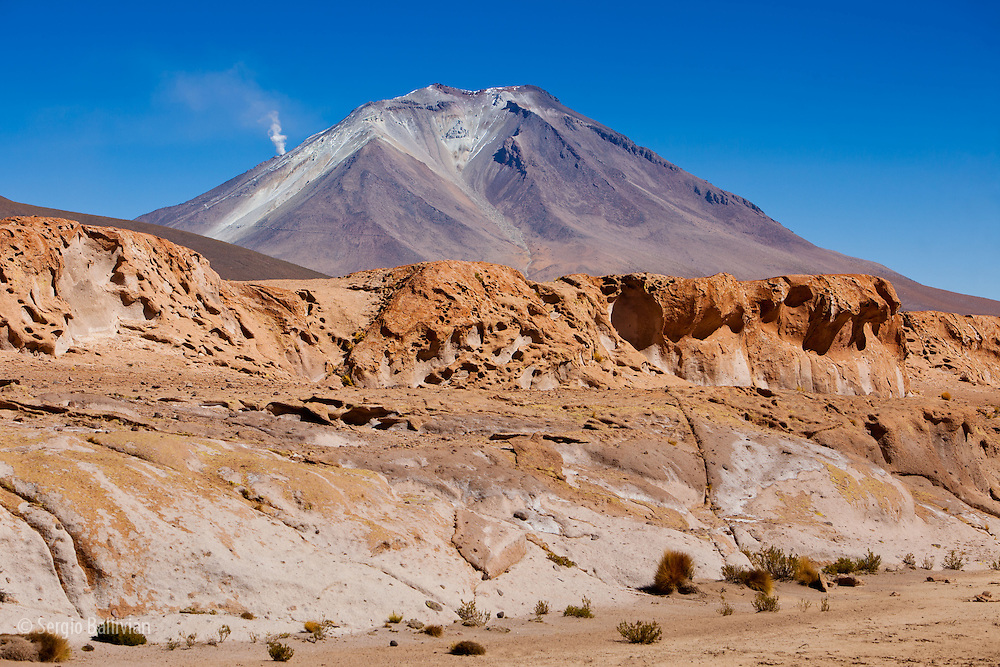 The ancient lava flows of past eruptions from Mt. Ollague (Chile/Bolivia border) create a rugged landscape of canyons and arroyos where native hardy plants survive the high-altitude, and freezing cold winds of the Sud Lipez region in the Department of Potosi in the  southwestern corner of Bolivia.