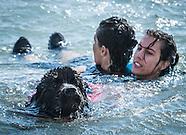 2014 Convegno Nuoto per Salvamento
