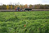 Gumz Farms selects