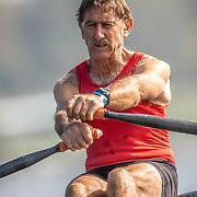 Legion of Rowers 2019 (NZL)