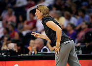 Sep 11, 2011; Phoenix, AZ, USA; Minnesota Lynx head coach Cheryl Reeve reacts from the sidelines while playing against the Phoenix Mercury at the US Airways Center.  The Lynx defeated the Mercury 96-90. Mandatory Credit: Jennifer Stewart-US PRESSWIRE