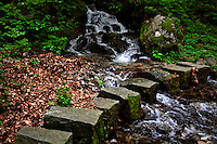 Ticino, Southern Switzerland. Stepping stones over a bubbling brook in the forest. Close-up.