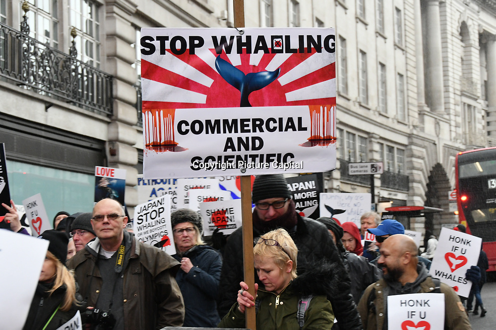 Activists anger Japan crafty pulling out of IWC   International Whaling Commission, London, UK