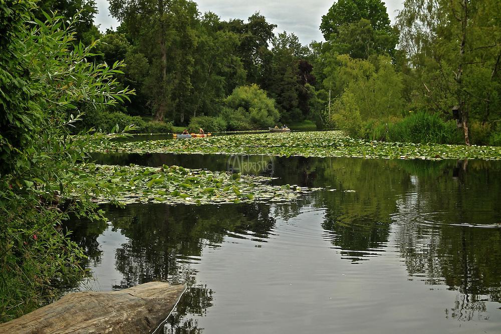 Washington Park Arboretum, Seattle, June 2012.