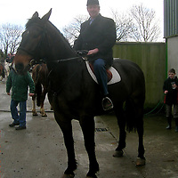 James Breen on his horse Bertie at Ennis Showgrounds 2007