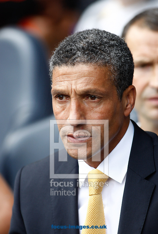 Picture by Andrew Tobin/Focus Images Ltd +44 7710 761829.01/09/2012. Norwich Manager Chris Hughton looks on during the Barclays Premier League match at White Hart Lane, London.