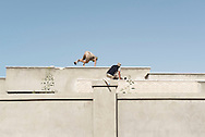 Libya: Fighters affiliated with Libya's Government of National Accord's (GNA) take cover on a roof trying to spot ISIS positions in 700 neighbourhood in Sirte. Alessio Romenzi