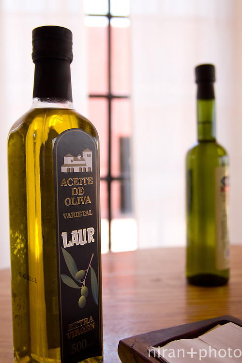 Olive Oil in Mendoza