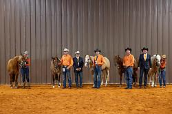 Team Netherlands, Lia Freriks, Heule Hubertus, Pouls Jurgen, Sandijck Michelo, Young-van Osch Ricky,<br /> World Equestrian Games - Tryon 2018<br /> © Hippo Foto - Dirk Caremans<br /> 11/09/2018