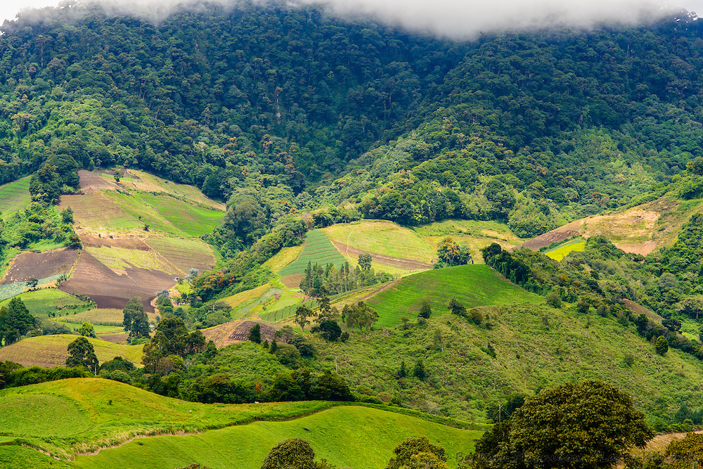 Farmland encroaching rainforest above Cerro Punta, Panama