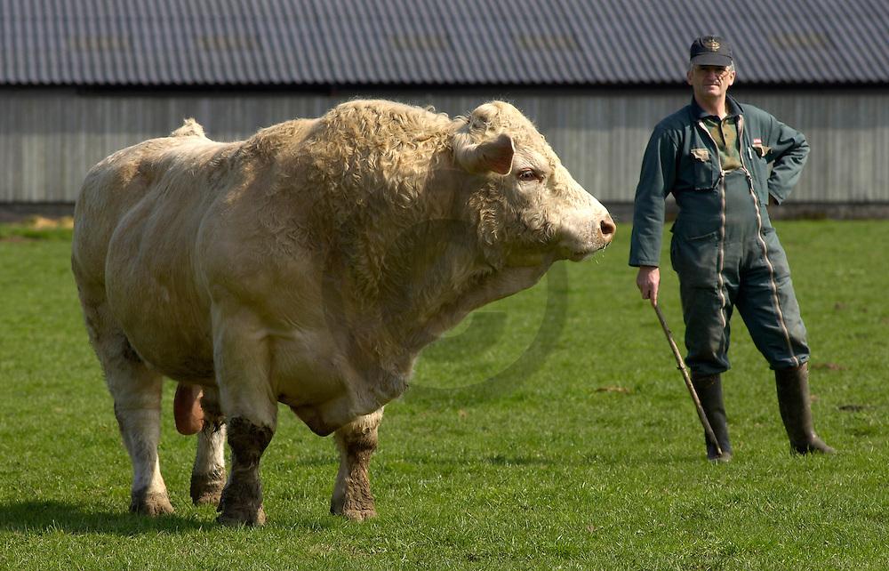 01/04/05 - CHAMPVERT - NIEVRE - FRANCE - GAEC BORDET - Agriculture raisonnee. Andre BORDET - Photo Jerome CHABANNE