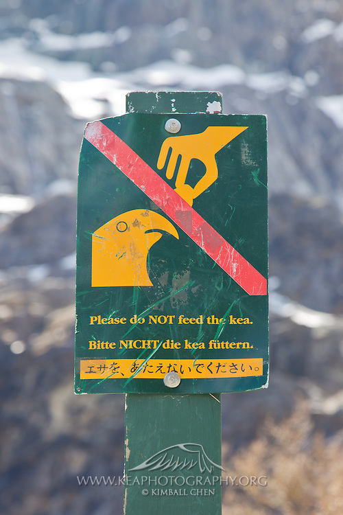 """Please do NOT feed the kea"" sign in Mount Aspiring National Park."