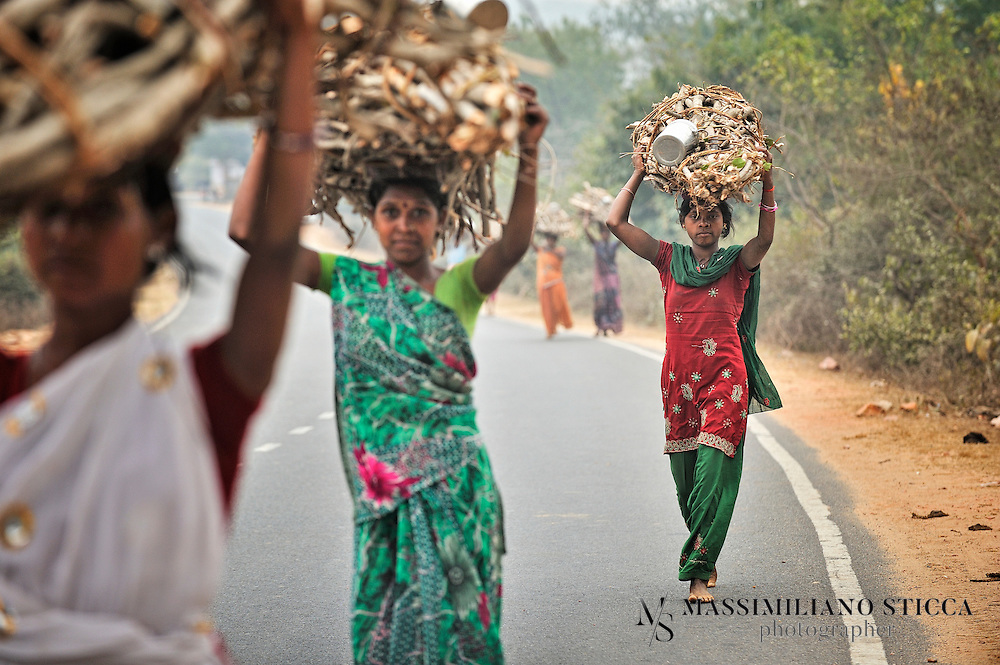 Women along a road to Rajgir are coming back home from the bush where they collected the wood. They will sell it to other villagers.