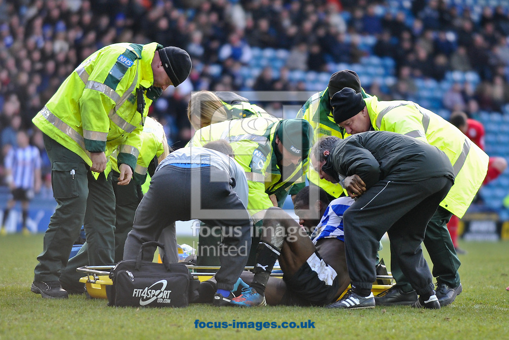 Picture by Richard Land/Focus Images Ltd +44 7713 507003.16/03/2013.Michail Antonio of Sheffield Wednesday is stretchered off during the npower Championship match at Hillsborough, Sheffield.